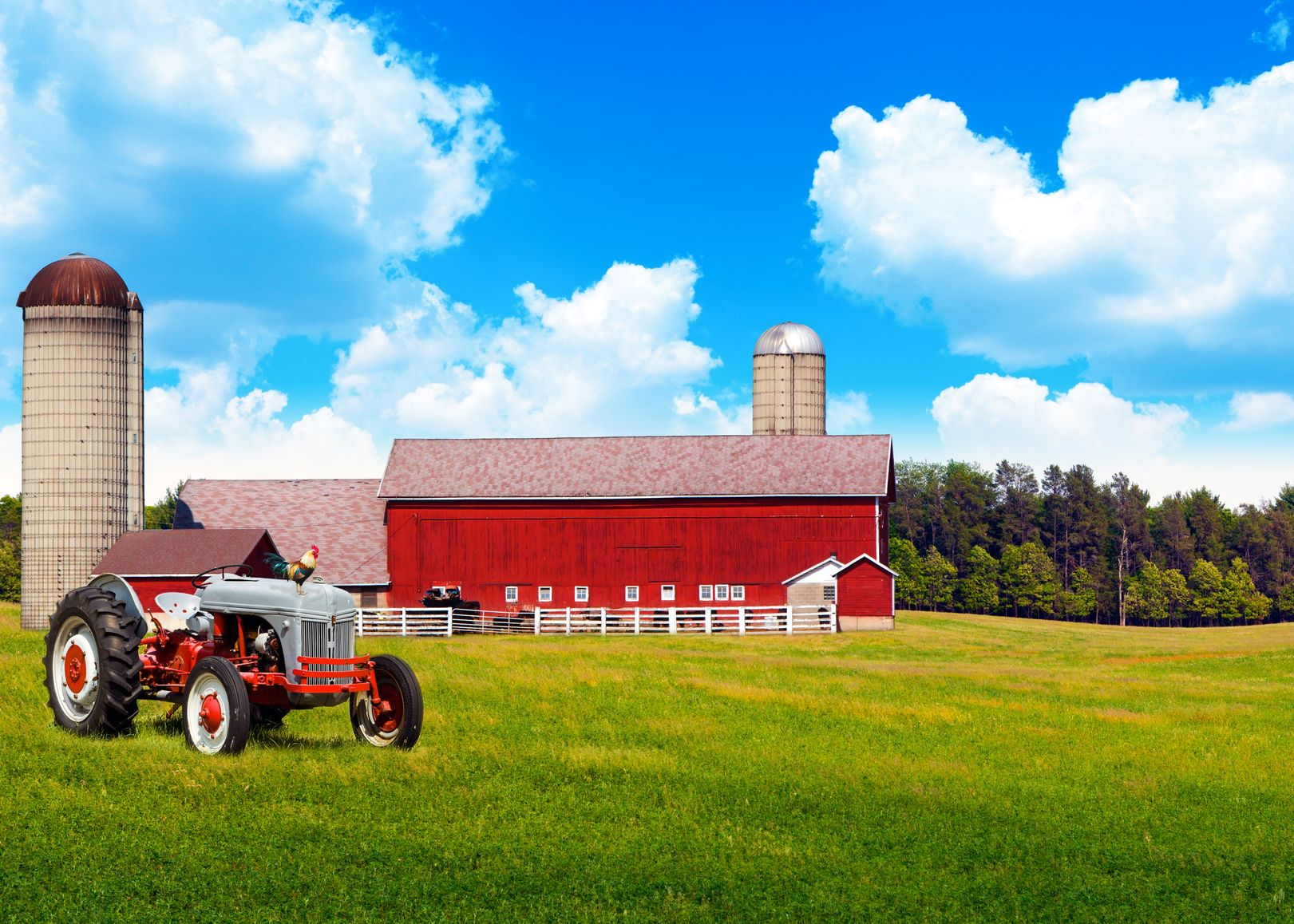 Avon, St Cloud, Albany, MN. Farm & Ranch Insurance